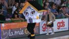 Limoges ABC - Stade Montois (10)
