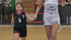 Limoges ABC - Toulouse MB 2 (11)